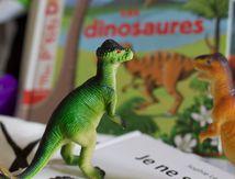 C'est le jour de la bibliothèque!!!! #3 Tout sur les dinosaures pour plusieurs âges...