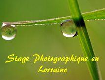 STAGE PHOTOGRAPHIQUE EN LORRAINE...Présentation en Images...
