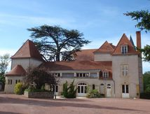 Cèdre du Lycée de Chervé