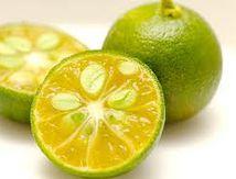 Crème brulée au citron de Menton