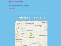 Chiens trouvés en Ille et Vilaine du 12 au 18/4/2015