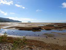 NZ Road Trip : La plage et... la fin ;-(
