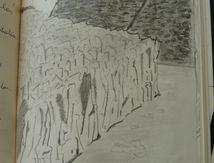 Croquis de Patagonie