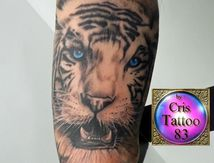 tiger-tattoo-arm