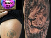 cover-up-with-lion