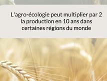 L'agro-écologie, qu'est ce que c'est ?