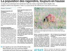 2 ÉLUS MONTOIS PIÉGÉS PAR 42643 RAGONDINS.