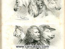 Traité physiologique de la ressemblance animale
