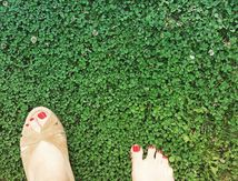 A mes pieds, l'été
