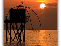 Les Pêcheries Atlantique