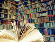 Notes de lecture : Une extraordinaire histoire d'amour...