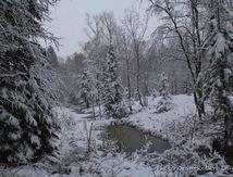 L'hiver chasse l'automne