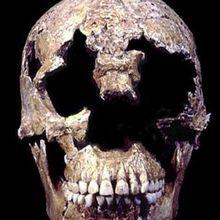 Les archéologues ont résolu le plus vieux cas d'homicide de l'Amérique coloniale