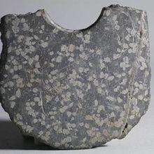 La plus ancienne écriture chinoise jamais découverte à Shanghai