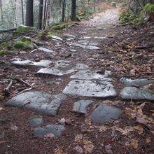 Les vestiges romains du Mont Sainte Odile
