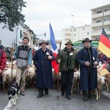Le 07 Mars, audience au tribunal à Luxembourg, pour la plainte déposée par les éleveurs allemands, contre le bouclage électronique!