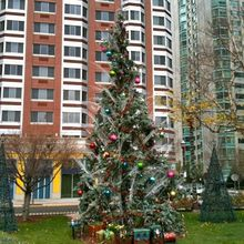 Jersey City prepares for Christmas