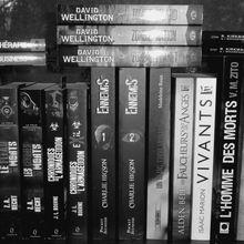 Le Monde Des Morts se décline en roman !