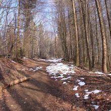 First day of Spring, in the Vosges