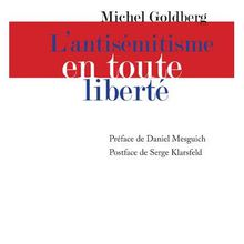 Interview de Michel Goldberg