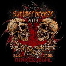 À VENDRE: Pass  Summerbreeze, 60€