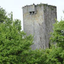 Tour de Luzan , Larroque sur l'Osse ( Gers 32 ) A
