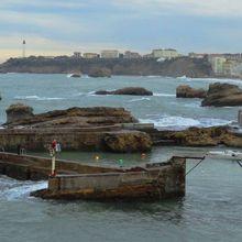 Port de Biarritz , Biarritz ( Pyrénées-Atlantiques 64 ) A