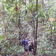 Cambodge (5): Trek dans le Ratanakiri