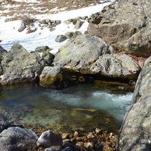 Un torrent de montagne et ses truites le 21 mars 2015