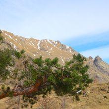 Superbe sortie peche en torrent de montagne avril 2015