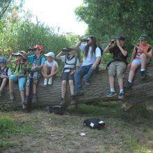 Les JPN ( groupe local de la LPO) dans la réserve de Wagbachniederung