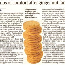 My Kingdom for a Ginger Nut !