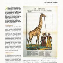 GEORGES POISSON : LA GIRAFE DE CHARLES X