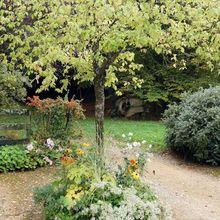 Gélaucourt, village jardin
