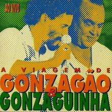 A Viagem de Gonzagão e Gonzaguinha (1981) - Gonzagão e Gonzaguinha