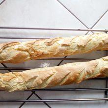 Baguettes au companion (ou pas)