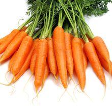 Que faire avec des carottes (recettes à base de carottes)