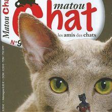MATOU CHAT N°9