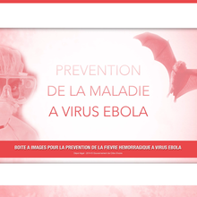 COMMENT PREVENIR LA FIEVRE HEMORRAGIQUE DUE AU VIRUS EBOLA