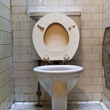 Les toilettes des écoles sur la sellette !