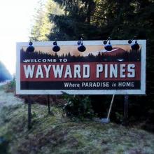 """FOX annonce le lancement simultané dans 125 pays de """"Wayward Pines"""" avec Matt Dillon le jeudi 14 mai : découvrez la bande annonce"""