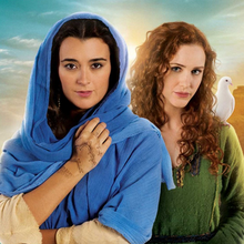 "Grille des networks du 29/03 au 03/04 : ""The Dovekeepers"" avec Cote De Pablo, ""Weird Loners"", ""The Big Bang Theory"", fin de ""The Slap"""
