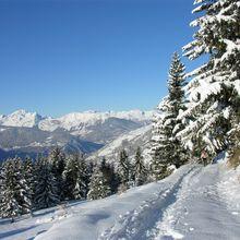 Mont de la Guerre (2293m)
