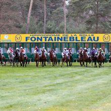 Quinté+ - Jeudi 30 Mars à Fontainebleau