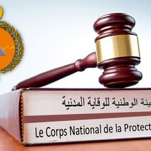 Statut particulier du corps national de la Protection Civile