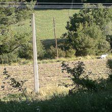 Découverte des cols de Vesc (750m) et de l'Homme (616m)