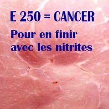 Cash investigation : E 250 (nitrites) cancérigènes. Vers le boycott d'E 250 ?