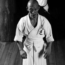 """""""Saisir l'intention"""", réflexions sur l'enseignement de Hino senseï"""