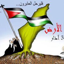 30 mars, La journée de la terre et de la résistance en Palestine. (Ziad Medoukh)