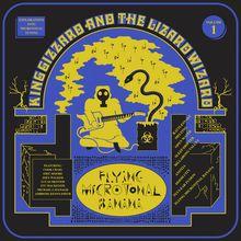 "King Gizzard & The Lizard Wizard - ""flying microtonal banana"" (2017)"